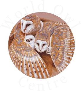 World Owl Centre
