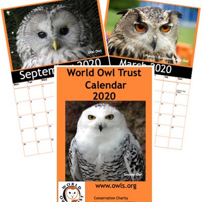 WOT 2020 Calendar